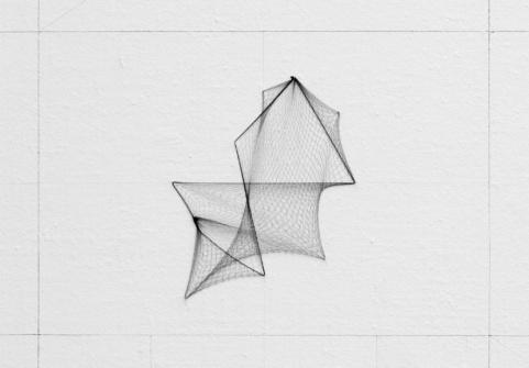 enter-17-hair-net-geometry
